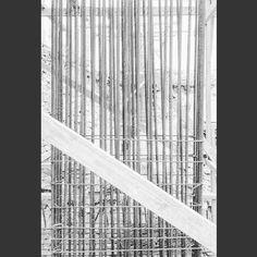 Tejido estructural.3.  #architecture #arquitectura #art  #digitalart #design #interiordesign #interior #inspiration #landscape #beautiful #city #vintage #drawing #illustration #creative #furniture #space #dominicanrepublic #decor #colorful #nature #work #collage #sketch #model #home #archilovers #amazing #building by sarraff.k