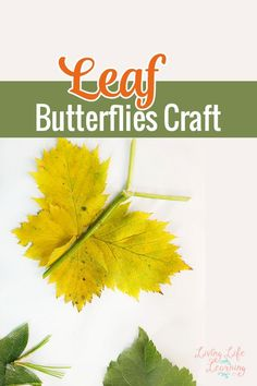 A super fun way to use nature in your home, collect leaves the next time you're taking a nature walk and create your own leaf butterflies craft with your kids. They make wonderful card decorations too. Projects For Kids, Craft Projects, Crafts For Kids, Craft Ideas, Thanksgiving Crafts, Fall Crafts, Twig Crafts, Leaf Crafts, Autumn Activities For Kids