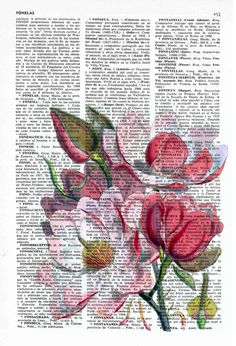 Items similar to Vintage Book Print Dictionary or Encyclopedia Book print Magnolia Flower on Vintage Encyclopedic Bookart art on Etsy Book Page Art, Book Art, Newspaper Canvas, Australian Native Flowers, Floral Drawing, Butterfly Wall Art, Dictionary Art, Magnolia Flower, Painted Books