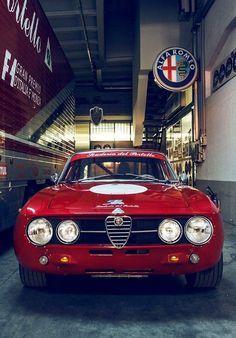 Alfa Roméo Giulia   ALFA lover