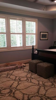Dog approved plantation shutters in the Master bedroom Southern Accents, Home, Windows, Master Bedroom, Contemporary Rug, Bedroom, Window Treatments, Shutters