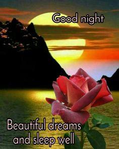 Good Night Beautiful, Beautiful Dream, Good Morning, Gifs, Movie Posters, Image, Buen Dia, Bonjour, Film Poster
