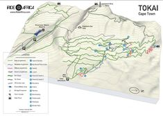 Tokai MTB Map - iRide AfricaiRide Africa Mtb Trails, Mountain Bike Trails, Trail Maps, Nature Reserve, Cool Bikes, Cross Country, Bouldering, Africa, Tours