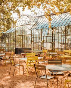 Amsterdam, Atrium, Wine Country, Farm Life, Summer Days, Touring, Oasis, Hot, Garden