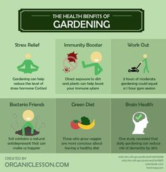 Wonderful health benefits of Gardening [Infographic] Benefits Of Gardening, Organic Gardening, Gardening Tips, Kitchen Gardening, Gardening Vegetables, Gardening Supplies, Container Gardening, Health Benefits, Health Tips