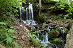 Unnamed Falls, Worthington State Forest, New Jersey