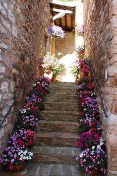 Stairs lined in gorgeous florals!