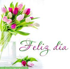BANCO DE IMÁGENES: 70 nombres de mujeres con tulipanes de colores... (Busca el tuyo)