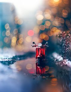 Magical miniature toy car still life photography by fine art photographer ashraful arefin Nature Photography Quotes, Vintage Nature Photography, Cute Photography, Creative Photography, Love Wallpaper, Nature Wallpaper, Iphone Wallpaper, Trendy Wallpaper, Beautiful Flowers Wallpapers