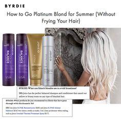 Go Platinum Blond... the healthy way. Get the expert advice from Joico's Denis De Souza, celebrity colorist.