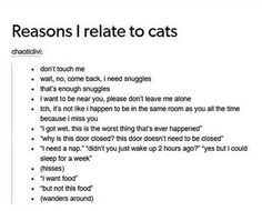 Reasons I relate to cats XD