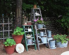 Hometalk :: Old Ladders Reach New Heights in the Garden