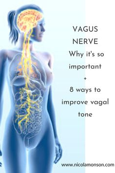 Daily Health Tips, Health And Fitness Tips, Health Advice, Health And Wellbeing, Health Diet, Health And Beauty, Health Care, Vagus Nerve Stimulator, Women's Health Clinic