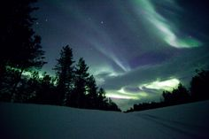 Norther Lights in Pallas, Finnish Lapland