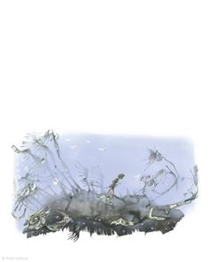 """Peter Uchnár illustration for """"Peter Pan"""". Art Story, Peter Pan, Illustrator, Nature, Naturaleza, Illustrators, Nature Illustration, Peter Pans, Outdoors"""