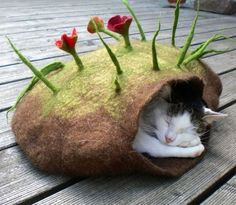 it has everything. it has felt, plants, a cat...
