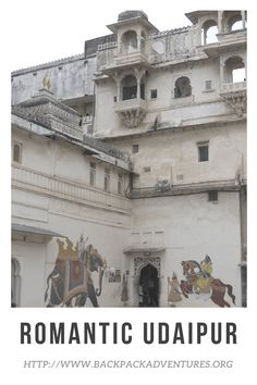 A guide to the top 12 things to see and do in the romantic city of Udaipur, India. Including a visit to the NGO's of Seva Mandir and Animal Aid Unlimited