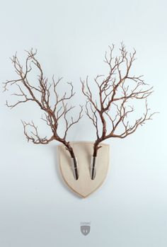 Forget Dead Animals – Bring Your Walls To Life With This Plant Wall Trophy