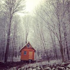 Cabin // Delaware