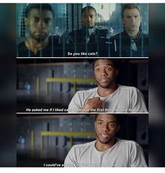 falcon and black panther