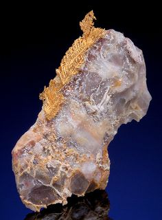Native Gold feather on marbled Calcite // Hope's Nose, Torquay, South Devon, Devon, England  Source:ggeology