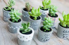 Painted Plant Pots, Beton Diy, Concrete Crafts, Creation Deco, Miniature Plants, Cactus Y Suculentas, Diy Home Crafts, Plant Holders, Plant Decor