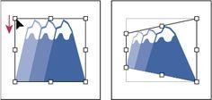 Adobe Illustrator * オブジェクトの拡大や縮小、シアーおよび変形