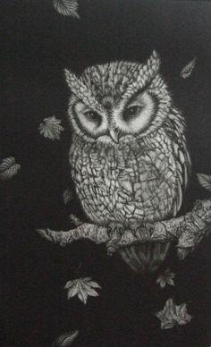 art owl Etching