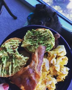 Because I don't always eat mini donuts for breakfast (but if I could, I would!). Peep my sweet Otto trying to convince me to share  #bae = #BaconAndEggs and #avocadotoast  Gotta fuel up for kickboxing at noon!! Remember, tomorrow is FriYAY!!! Have a great day guys!! #breakfast #foodisfuel #photobomb #slap90days #teamslap #slapnutrition #slapnation #fitfam #fitness #fitspiration #workout #girlswholift #fitgirlsnation #motivation #fitnessjourney #igfit #fitfluential #fitlikeagirl