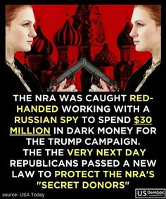 To solve the gun problem, we have to vote them out of office. In other words, WE FLIP the republican party for them. Caricatures, New Law, Republican Party, Social Justice, Equality, Donald Trump, Funny, Presidents, Campaign