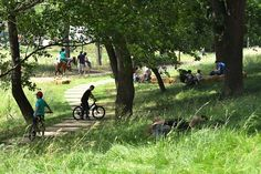 Vallon Park – Nature_as_a_tool_of_urban_renewal-11 « Landscape Architecture Works | Landezine