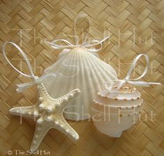 sea shell ornaments | seashell ornaments 3 jpg natale riciclato