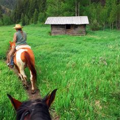 Between the ears by a historic cabin at @GVRRRANCH in Jackson Hole, a top Wyoming ranch and Equitrekking pick