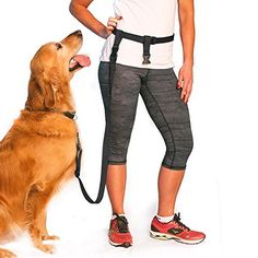 The Buddy System - Adjustable Hands Free Leash - Great for Running - Regular Dog