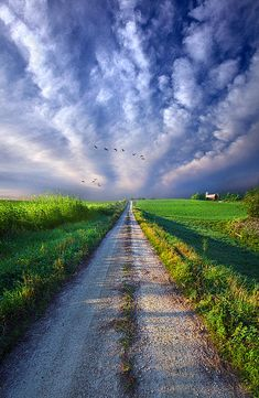 Take A Right At The Barn Photograph by Phil Koch