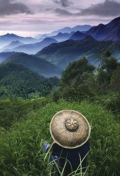 Rice farmer overlooking the mountains, Sagada, Cordilleras Mountains, Mountain Province, Insel Luzon. Philippines, Asia