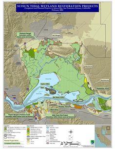 Suisun Tidal Wetland Restoration Map