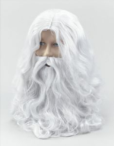 Wizard Wig & White Beard/Santa Wig and Beard