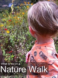 What to look for on a Nature Walk #simpleplay