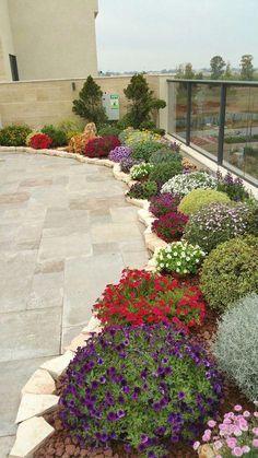 Gorgeous DIY Garden Landscaping Ideas You Small Backyard Landscaping, Landscaping With Rocks, Backyard Ideas, Garden Ideas, Front House Landscaping, Walkway Ideas, Pool Backyard, Tropical Landscaping, Garden Path
