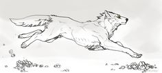 Kiba by Remarin on DeviantArt Animal Sketches, Animal Drawings, Art Sketches, Dog Anatomy, Wolf Sketch, Art Prompts, Furry Art, Easy Drawings, Art Inspo