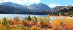 June Lake Villager - June Lake - United States