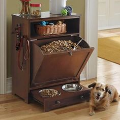 Pet Feeder Station. Love this all-in-one pet feeder from GrandinRoad.  $299