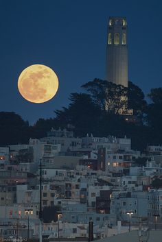 Perigree Moon with Coit Tower San Francisco by Tim McManus, via Flickr