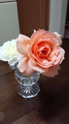 @blujayrain   ✿^o^)ノHi:)) Happy Monday! ♡ ふーちゃん が切り花にして咲かせた薔薇
