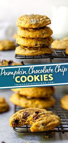 Fall isn't fall without Pumpkin Chocolate Chip Cookies, so get baking! These spiced pumpkin cookies are soft, chewy, and dotted with chocolate chips. Is the ultimate fall version of the classic chocolate chip cookie. Save this fall baking idea for the holidays!