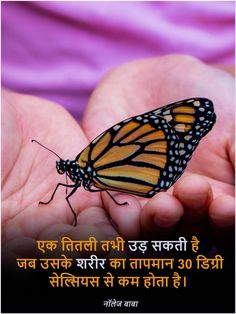 Interesting fact in hindi General Knowledge Book, Gernal Knowledge, Interesting Facts In Hindi, Amazing Facts, Real Facts, Weird Facts, Feeling Words List, Lion Facts, Ias Study Material