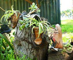 Blumen In Alten Schuhen Pflanzen Stiefel Ideen Pflanzgefaese ... Alte Schuhe Bepflanzen Originelle Pflanzgefase Garten