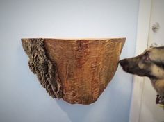 repurposed tree trunk to rustic shelf, how to, repurposing upcycling, rustic furniture, shelving ideas, woodworking projects