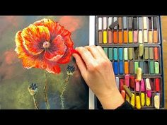 LIVE! Poppies in Pastel 12:30pm ET - YouTube